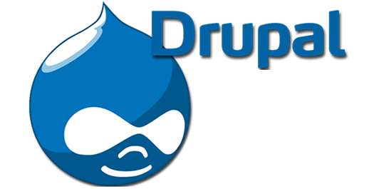 Top 10 Reasons You have to Consider Drupal for Your Ecommerce Store Website
